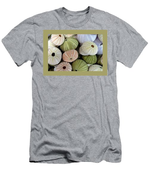Shells 5 Men's T-Shirt (Slim Fit) by Carla Parris