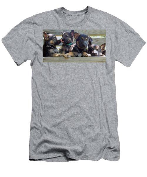Shepherd Pups 5 Men's T-Shirt (Athletic Fit)