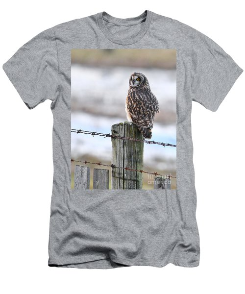 Short Eared Owl Men's T-Shirt (Athletic Fit)