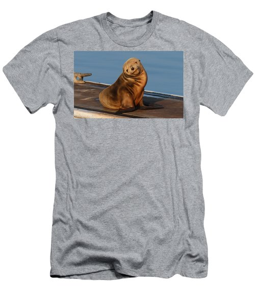 Shy Sea Lion Pup  Men's T-Shirt (Athletic Fit)