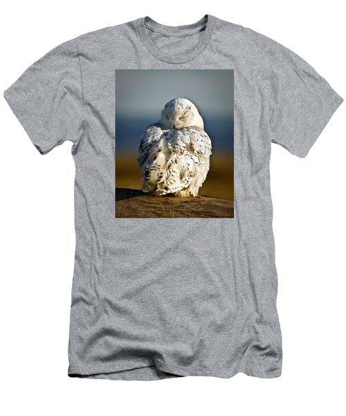 Sleeping Snowy Owl Men's T-Shirt (Slim Fit) by Steve McKinzie