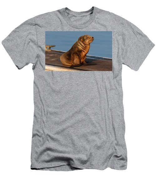Sleeping Wild Sea Lion Pup  Men's T-Shirt (Athletic Fit)