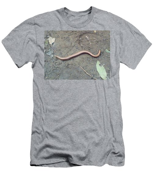 Slow Worm Men's T-Shirt (Slim Fit) by John Williams
