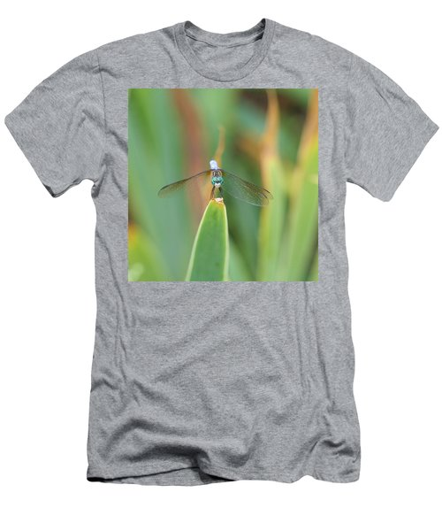 Smiling Dragonfly Men's T-Shirt (Athletic Fit)