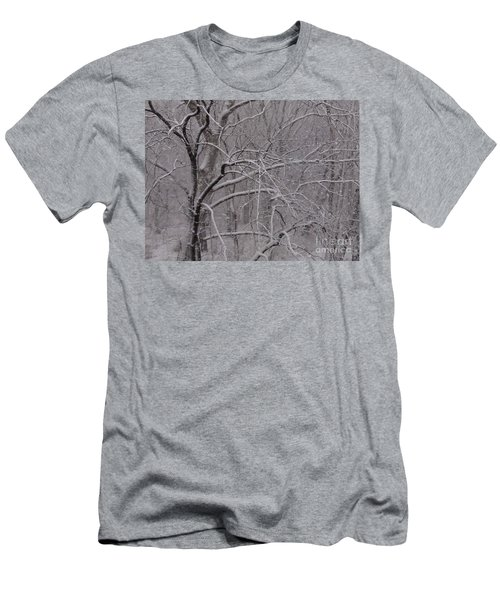 Snow In The Trees At Bulls Island Men's T-Shirt (Athletic Fit)