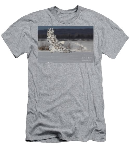 Snowy Owl In Flight Men's T-Shirt (Slim Fit) by Mircea Costina Photography