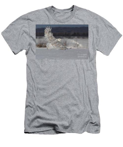 Snowy Owl In Flight Men's T-Shirt (Athletic Fit)