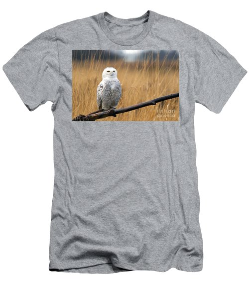 Snowy Owl On Branch Men's T-Shirt (Athletic Fit)