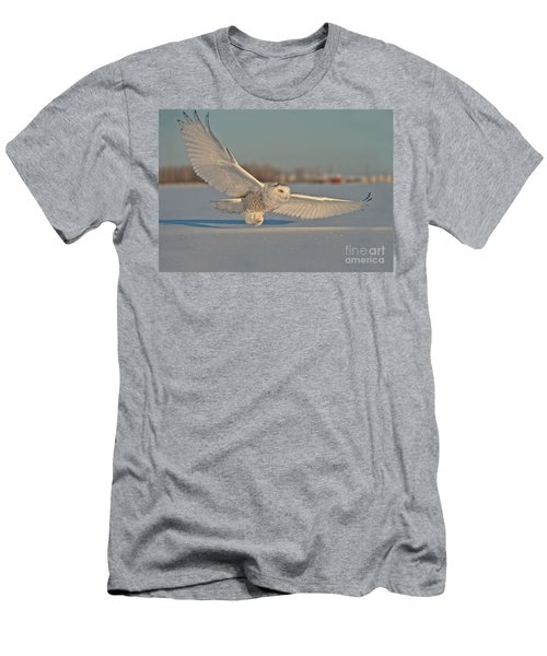 Snowy Owl Pictures 7 Men's T-Shirt (Athletic Fit)