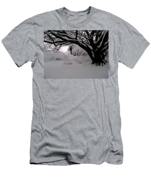 Snowy Path Men's T-Shirt (Athletic Fit)