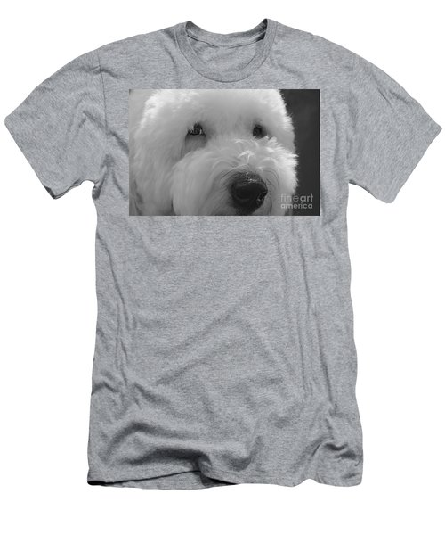 Soulful Eye's Old English Sheep Dog Men's T-Shirt (Athletic Fit)
