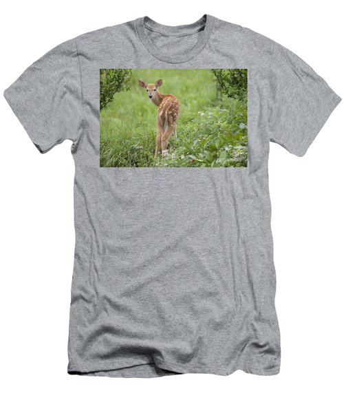 Spring Fawn Men's T-Shirt (Athletic Fit)