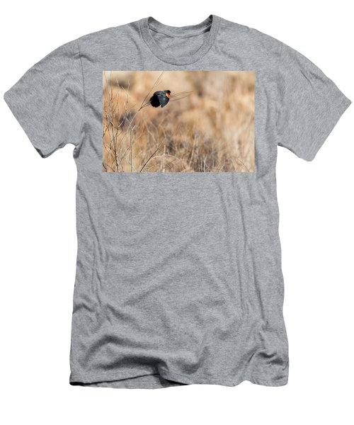 Springtime Song Men's T-Shirt (Slim Fit) by Bill Wakeley