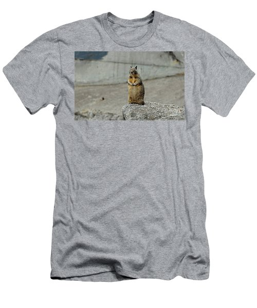 Men's T-Shirt (Slim Fit) featuring the photograph Squirrel At Lover's Point  by Susan Wiedmann