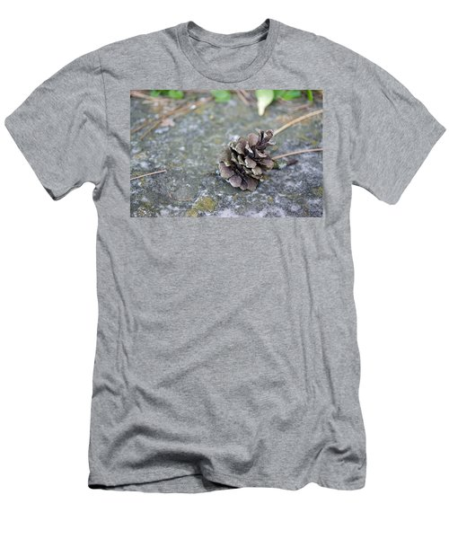 Summer Pinecone Men's T-Shirt (Athletic Fit)
