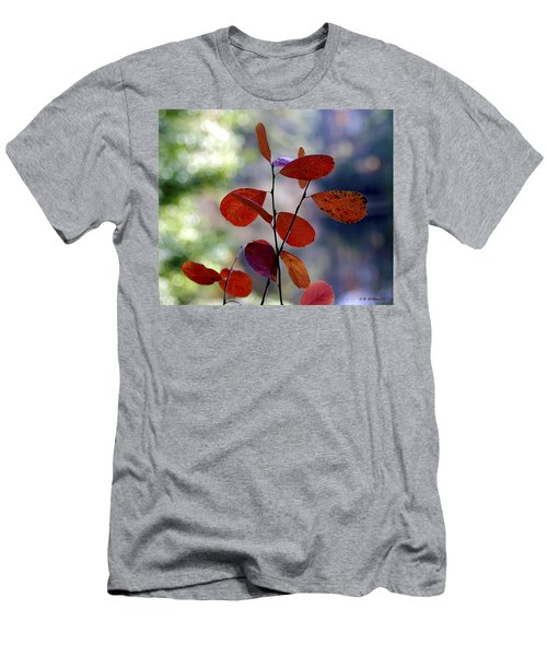Summer's End Men's T-Shirt (Slim Fit) by Brian Wallace