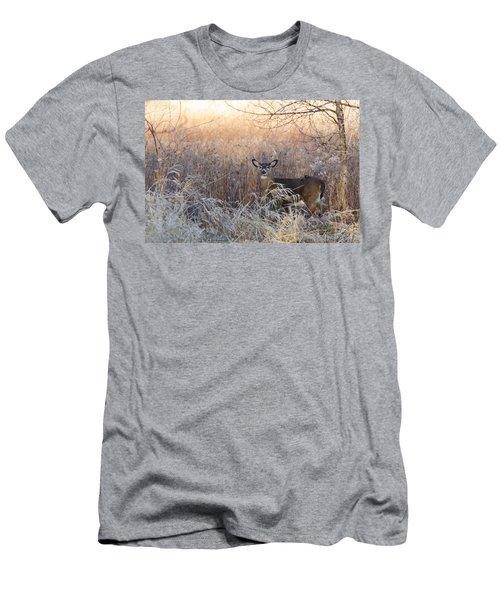 Sunshine Deer Men's T-Shirt (Athletic Fit)