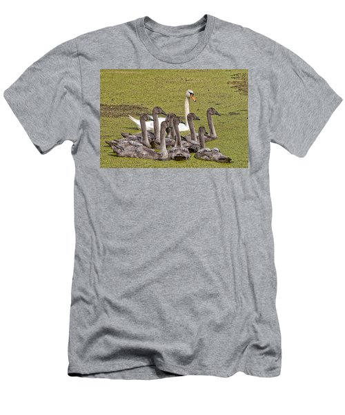 Swans Family Men's T-Shirt (Slim Fit) by Mike Santis