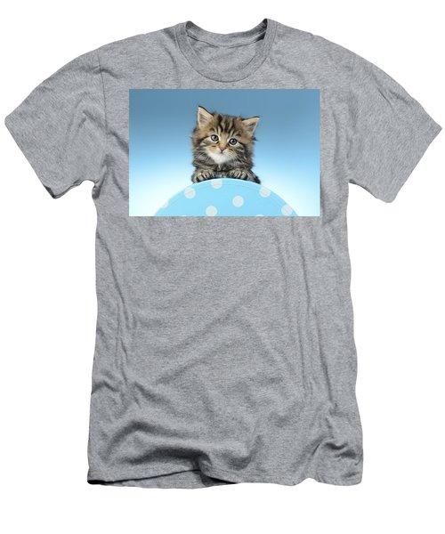 Tabby On Polka Dot Men's T-Shirt (Athletic Fit)