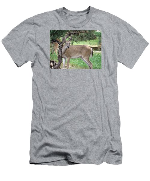 Men's T-Shirt (Slim Fit) featuring the photograph Texas Beauty - White Tail Doe by Ella Kaye Dickey