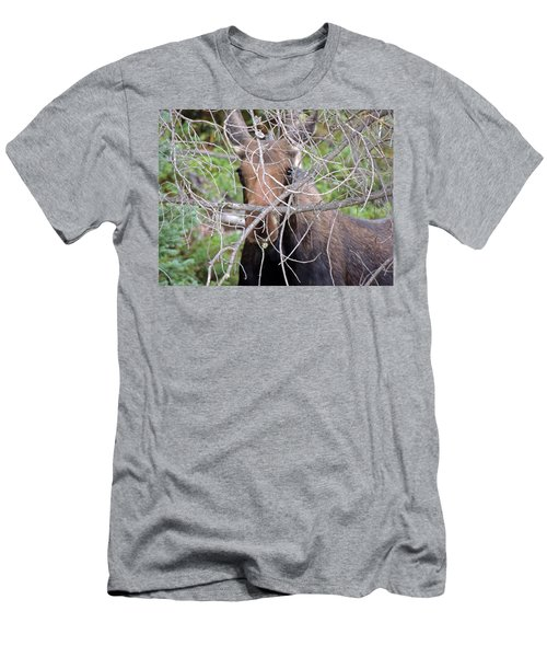 Men's T-Shirt (Slim Fit) featuring the photograph The Calf by Lynn Sprowl
