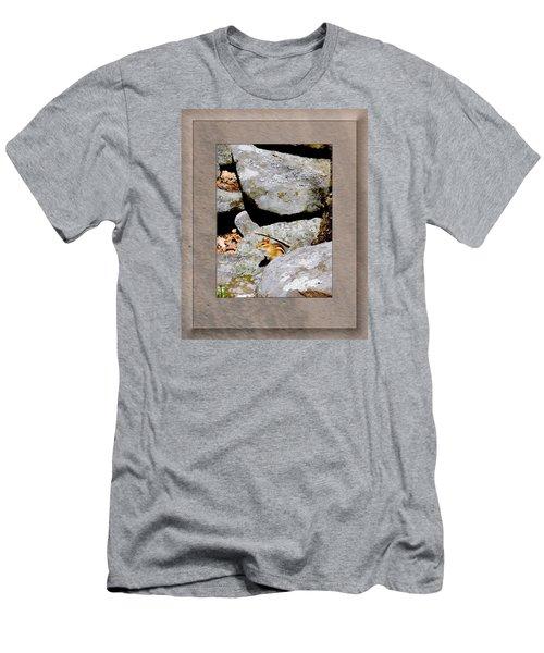 The Chipmunk Men's T-Shirt (Athletic Fit)