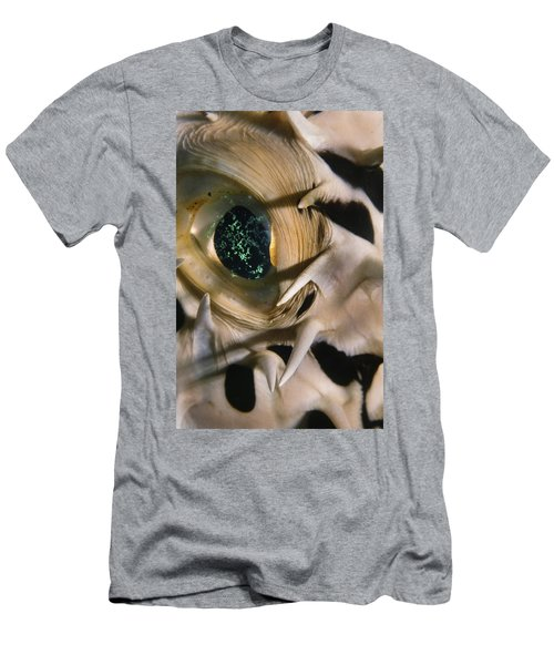 The Eye Of A Pufferfish Men's T-Shirt (Athletic Fit)