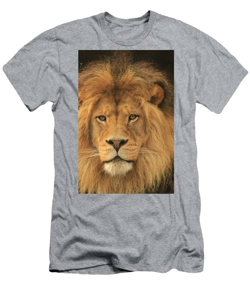 The Glory Of A King Men's T-Shirt (Athletic Fit)