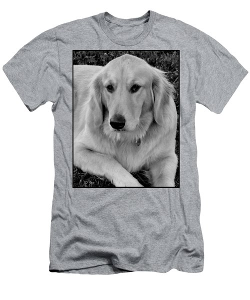 The Golden Retriever Men's T-Shirt (Athletic Fit)