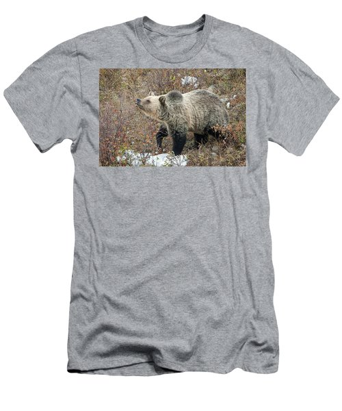 Men's T-Shirt (Slim Fit) featuring the photograph The Last Berry by Jack Bell