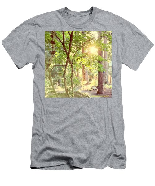 The Path Of Light Men's T-Shirt (Athletic Fit)