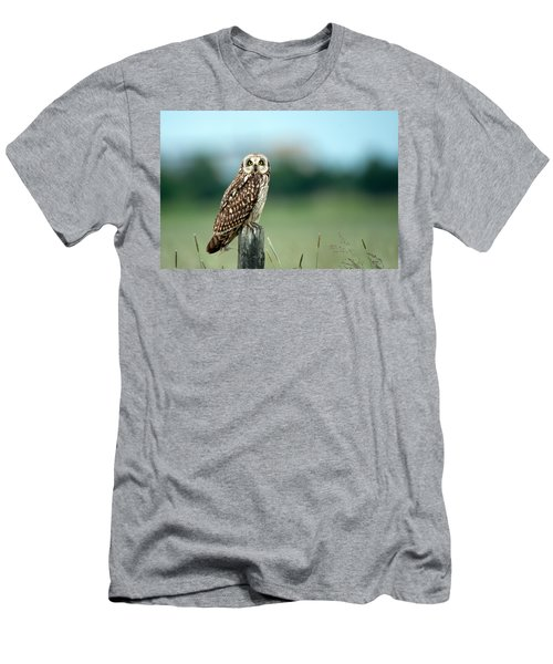 The Short-eared Owl  Men's T-Shirt (Athletic Fit)