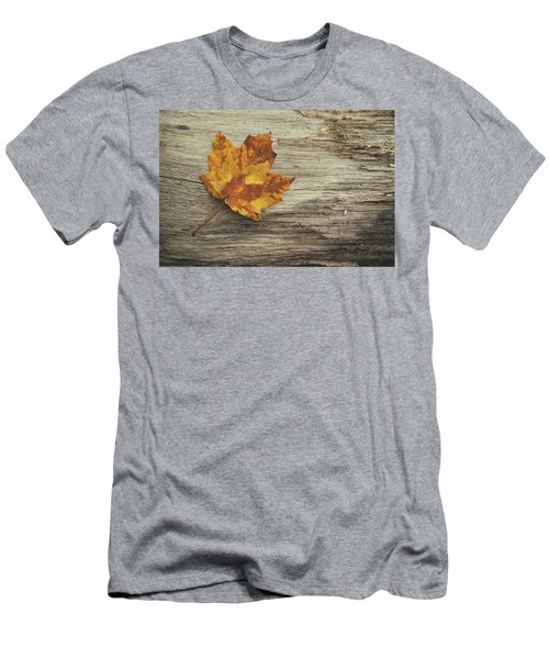 Three Leaves Men's T-Shirt (Athletic Fit)