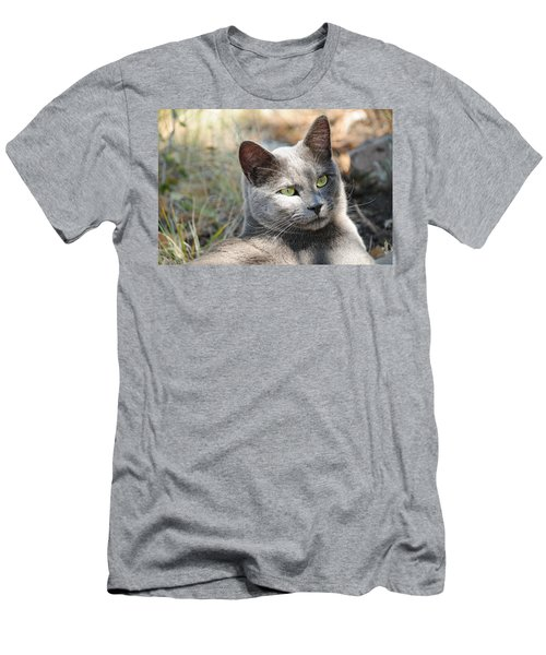 Tom Cat Men's T-Shirt (Athletic Fit)