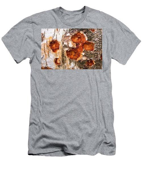 Tree Trunk Closeup - Wooden Structure Men's T-Shirt (Slim Fit) by Matthias Hauser