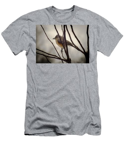 Tufted Titmouse Men's T-Shirt (Slim Fit) by Karen Wiles