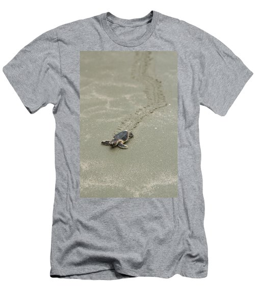 Turtle Tracks Men's T-Shirt (Athletic Fit)