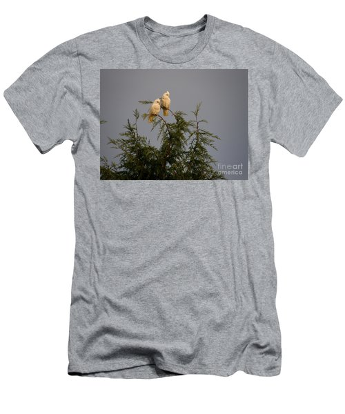Twin Cockatoos Men's T-Shirt (Athletic Fit)