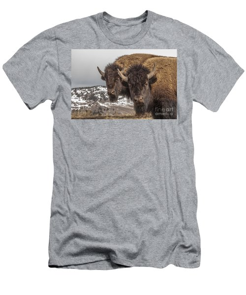Two Bison Men's T-Shirt (Athletic Fit)