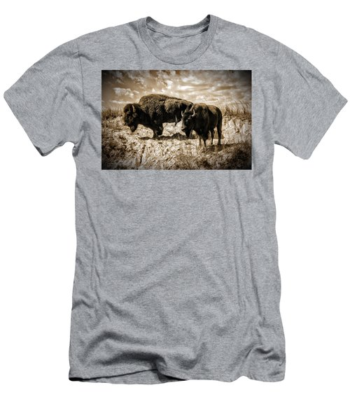 Two Buffalo Men's T-Shirt (Athletic Fit)