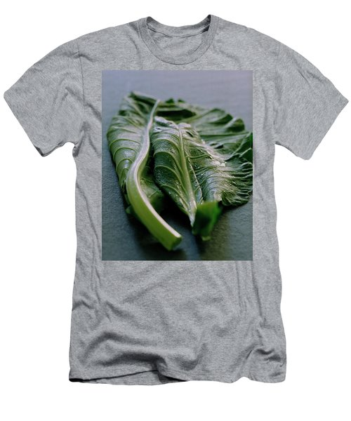 Two Collard Leaves Men's T-Shirt (Athletic Fit)