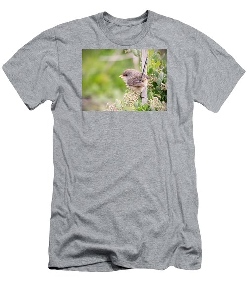 Variegated Fairywren  Men's T-Shirt (Athletic Fit)