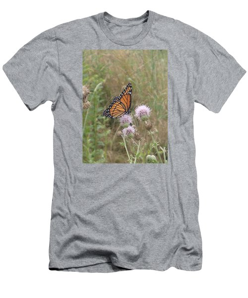 Viceroy On Thistle Men's T-Shirt (Slim Fit) by Robert Nickologianis