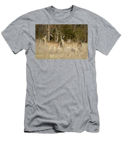 Vigilant White-tailed Deer Men's T-Shirt (Athletic Fit)