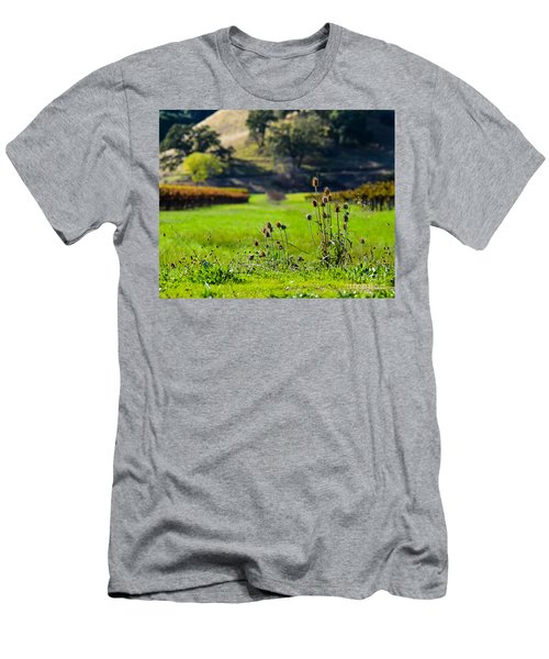 Vineyard Thistles Men's T-Shirt (Athletic Fit)