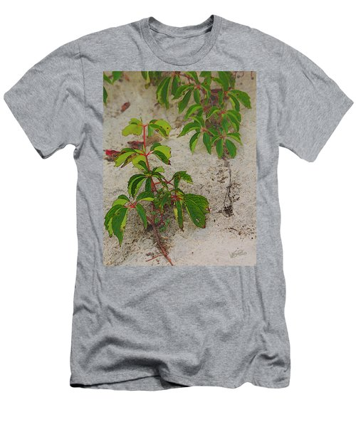 Virginia Creeper At The Beach Men's T-Shirt (Athletic Fit)