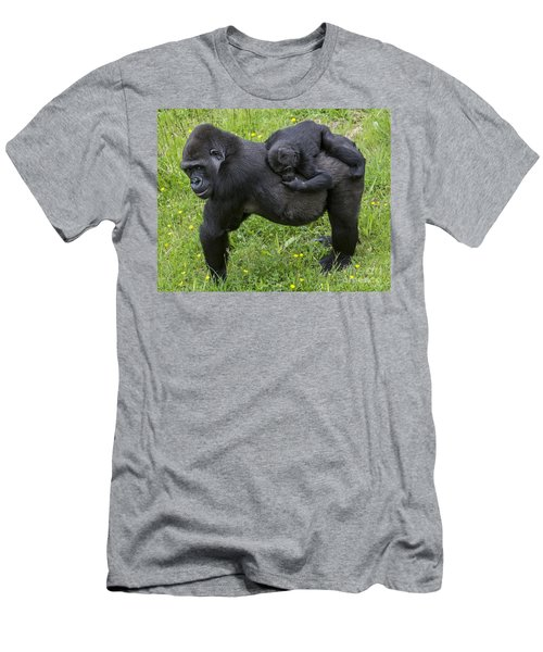 Western Lowland Gorilla 2 Men's T-Shirt (Athletic Fit)