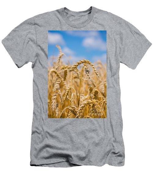 Wheat Men's T-Shirt (Slim Fit) by Cheryl Baxter