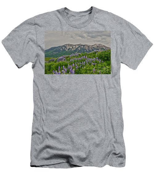 Whetstone Sunset Men's T-Shirt (Athletic Fit)