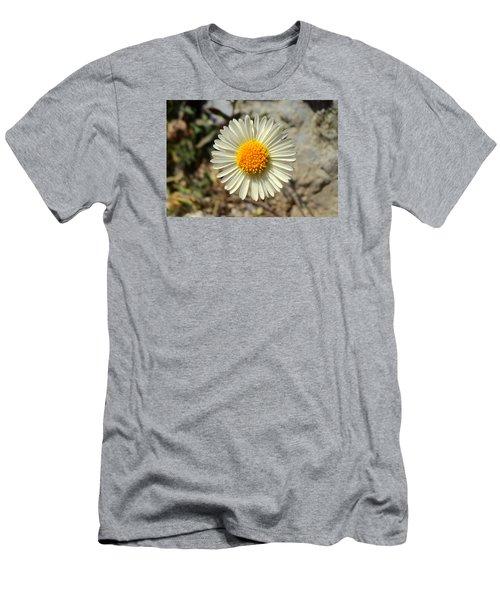 White Wild Flower Men's T-Shirt (Slim Fit) by Salman Ravish